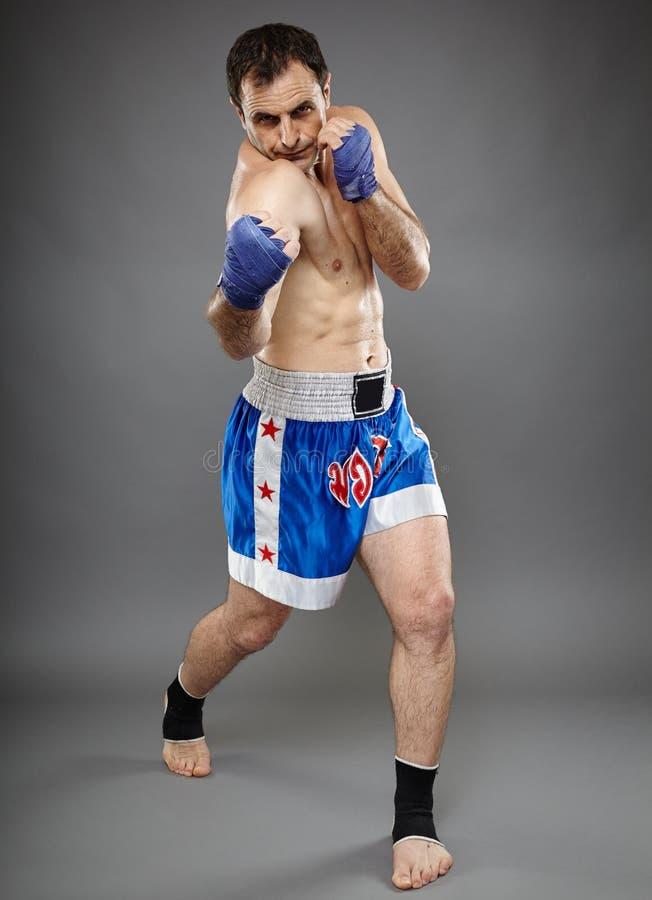 执行拳打的Kickbox战斗机 库存图片