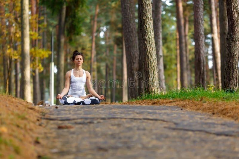 执行瑜伽的少妇在秋天城市公园执行 健康生活方式概念 库存照片