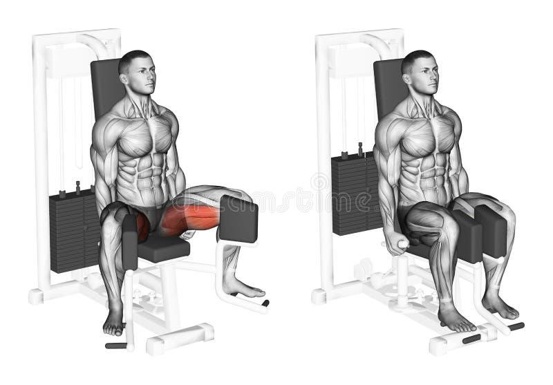 执行 在模拟器的减少脚内收肌的 库存例证