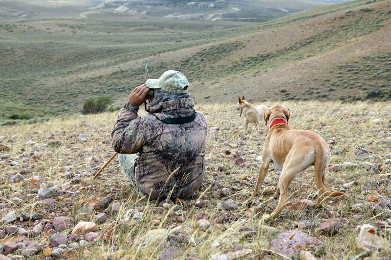 扫描干旱的风景的伪装猎人和狗 图库摄影