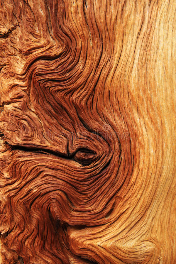 扭曲的谷物木头 免版税库存图片