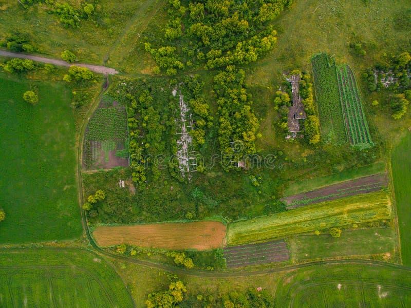 扭转在森林和树中的路鸟瞰图  日落领域在立陶宛 免版税库存照片