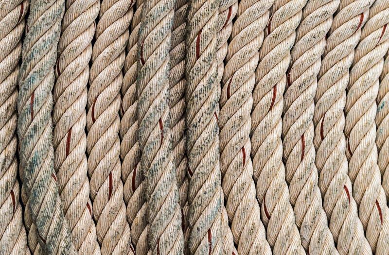 扭转的米黄绳索天然纤维背景海洋垂直线 图库摄影