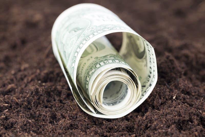 扭转的美国美元 库存图片