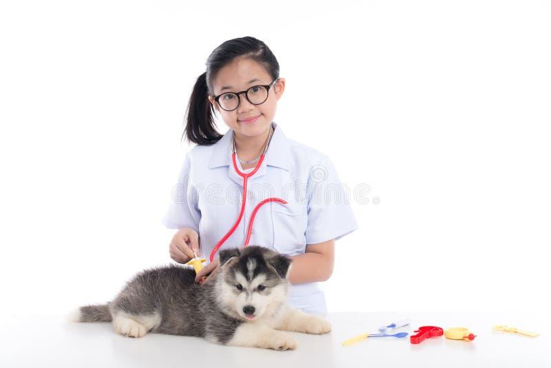 扮演兽医的亚裔孩子 库存照片