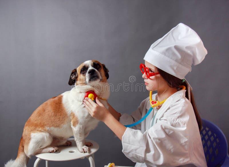 扮演有狗的女孩兽医 库存图片