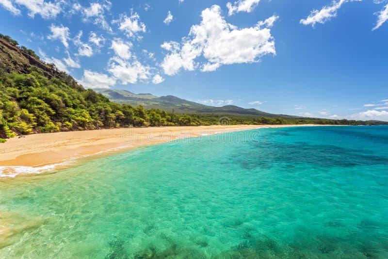 找到的热带天堂 免版税库存照片