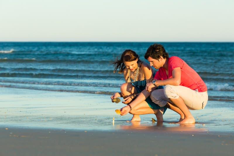 寻找壳的夫妇在日落 免版税库存照片