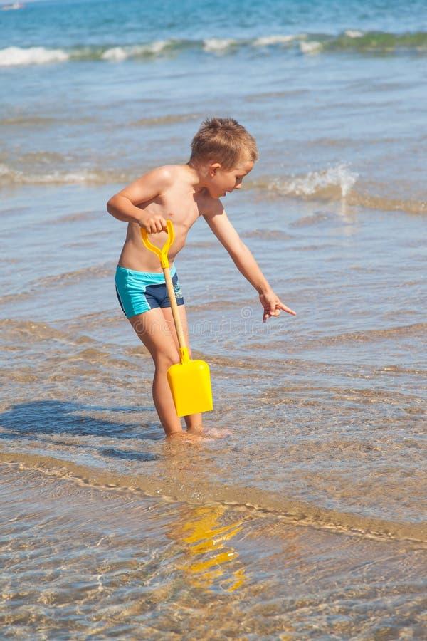 寻找海壳的男孩 免版税图库摄影
