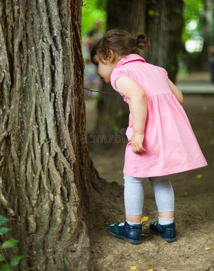 寻找臭虫的好奇孩子 免版税库存图片