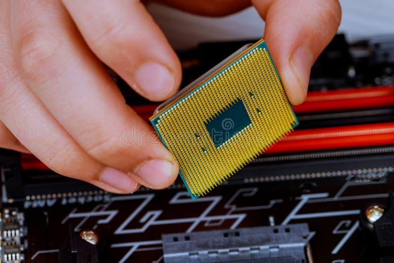 技术员在计算机主板的插口上把CPU放 计算机硬件的概念,修理, 免版税库存照片