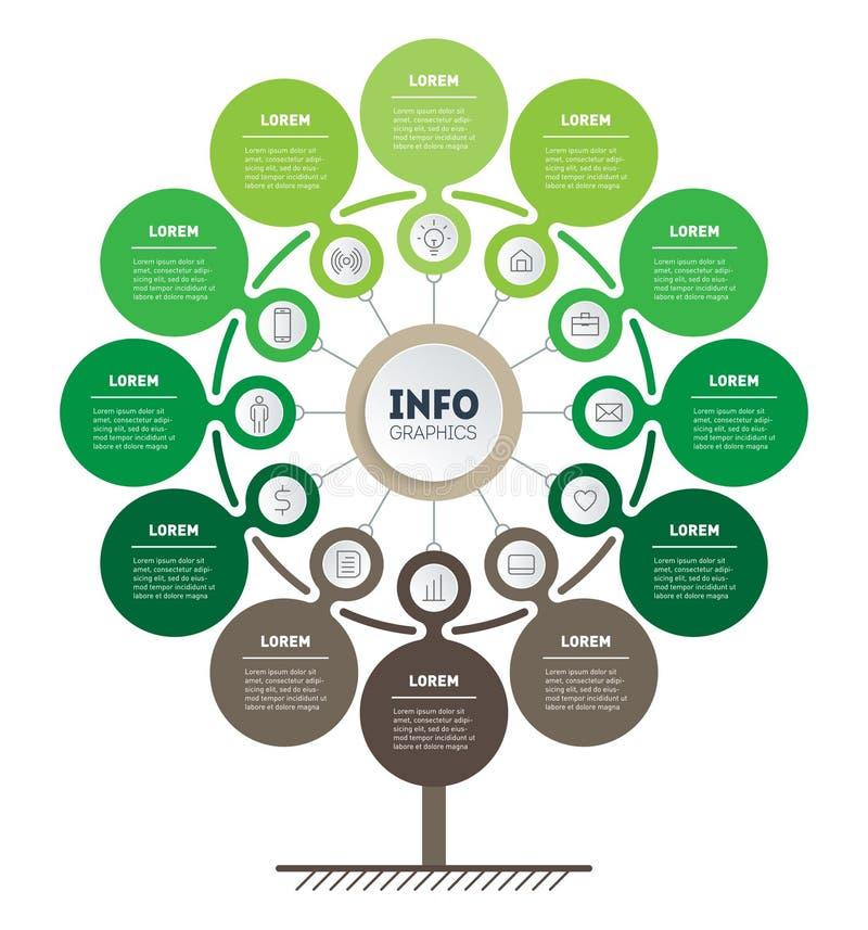 技术或教育过程Infographic与12点的 树、信息图或者图模板  垂直的eco事务 皇族释放例证