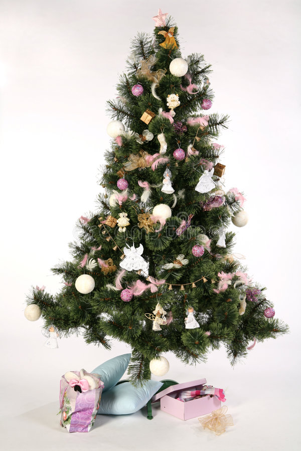 把圣诞节礼品结构树装箱 免版税图库摄影