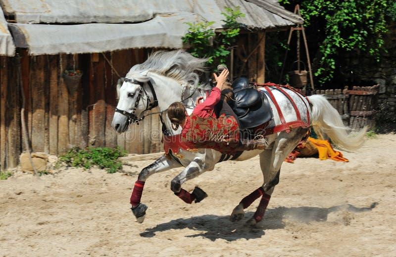 把戏骑马,普罗万传奇  库存照片