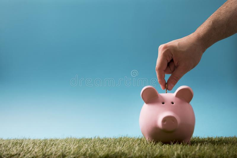 把硬币放入存钱罐在绿草上 库存照片