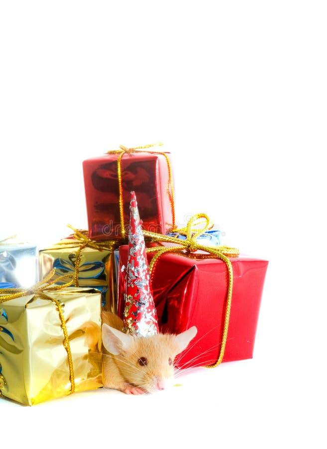 把礼品鼠标装箱 库存照片