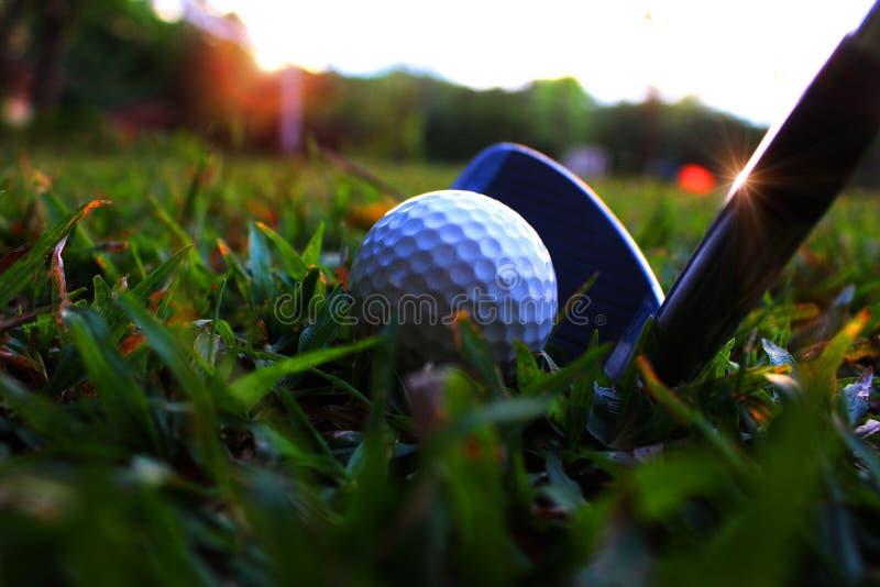 把铁放下在高尔夫球在白色高尔夫球旁边在绿色草坪击中 免版税库存照片
