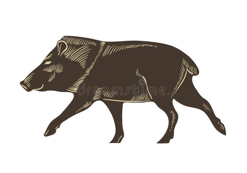 抓住衣领口的野猪传染媒介 野公猪剪影例证 被隔绝的手拉的猪 皇族释放例证