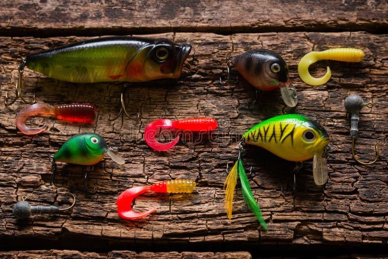 抓在一张木桌上的鱼的诱饵 免版税图库摄影