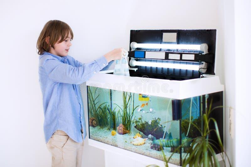 投入新的鱼的孩子在水族馆 免版税库存图片