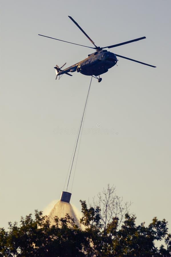 投入森林火灾的军用直升机在Istria克罗地亚 库存图片