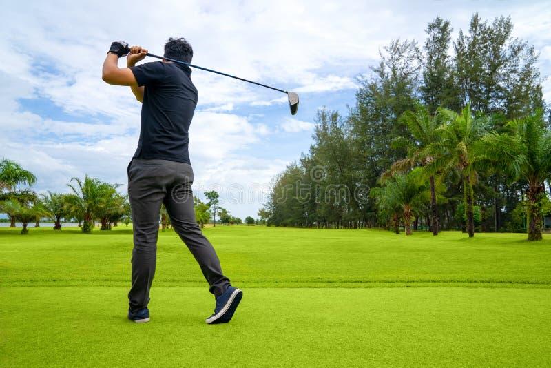 投入高尔夫球在绿色高尔夫球,在太阳集合晚上时间的透镜火光,高尔夫球运动员的高尔夫球运动员击中与俱乐部的高尔夫球球击在路线,当时 图库摄影