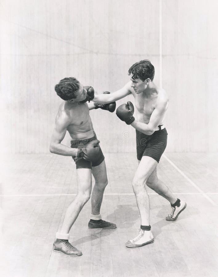 投掷一个右钩拳的拳击手 免版税库存图片