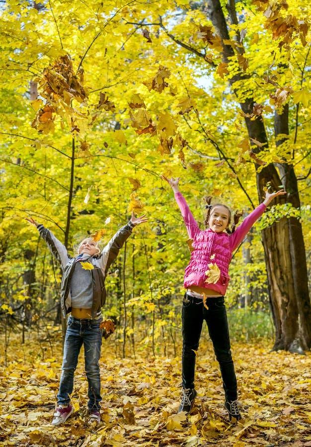 投掷叶子的愉快的孩子  库存照片