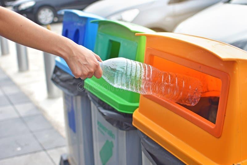 投掷塑料瓶的妇女入回收站 库存图片