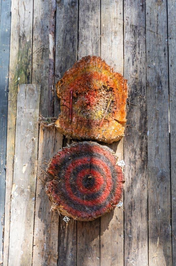 投掷的刀子的两个木目标在篱芭 免版税库存照片