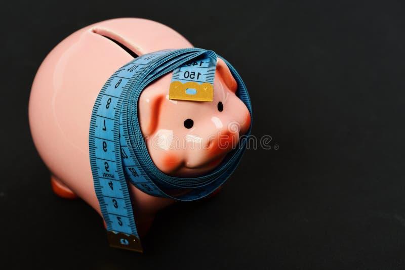 投资和测量或者计数想法 陶瓷玩具猪 图库摄影