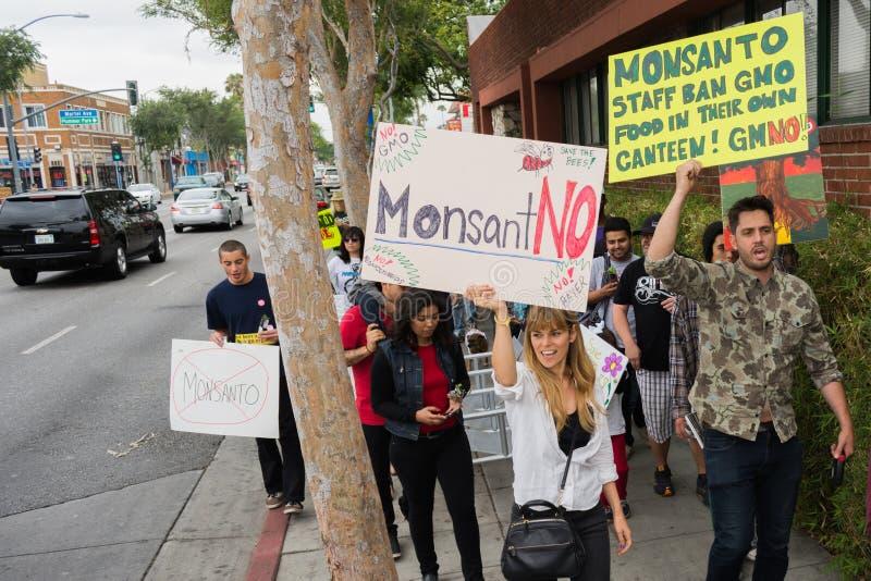 抗议者在街道召集了反对孟山都公司 库存照片