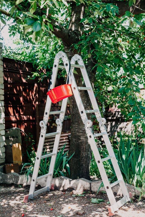 折叠的铝楼梯站立在树下 图库摄影