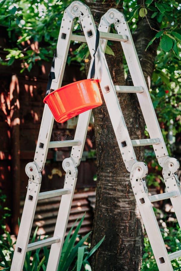 折叠的铝楼梯站立在树下 库存照片