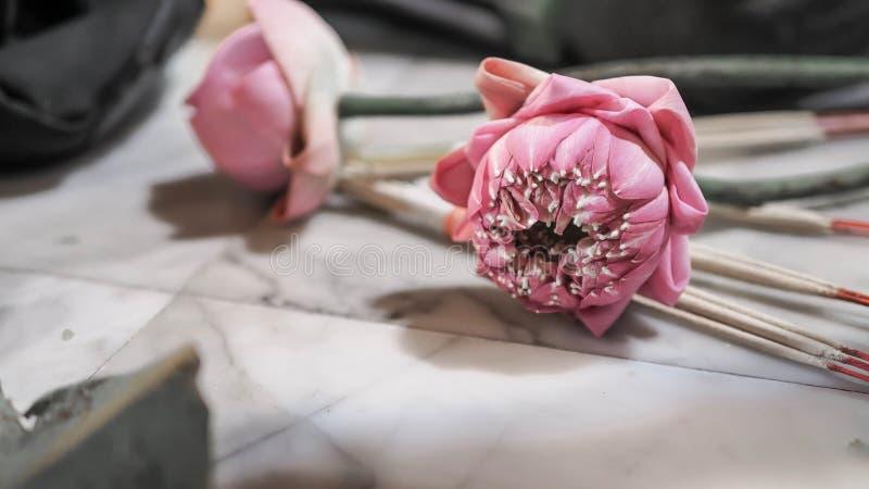 折叠莲花瓣诗歌选 可以折叠莲花瓣 图库摄影