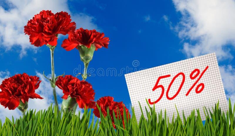 折扣待售, 50%折扣,在草特写镜头的美丽的花康乃馨 免版税图库摄影