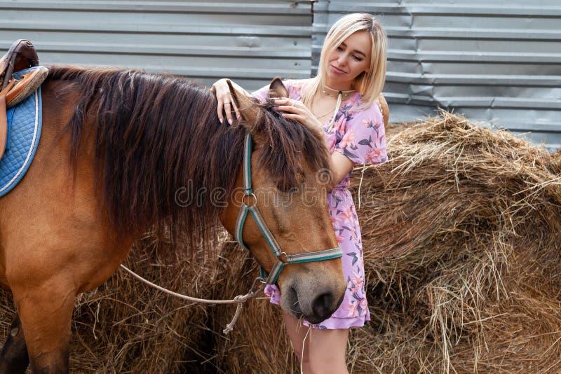 抚摸一匹棕色马的年轻白肤金发的妇女在干草堆附近吃干草在一个夏天晴天的步行前 免版税库存照片