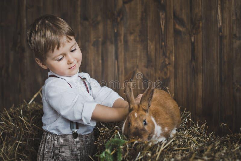 抚摸兔子6062的红发孩子 库存照片