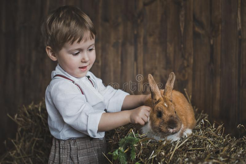 抚摸兔子6063的红发孩子 免版税库存照片