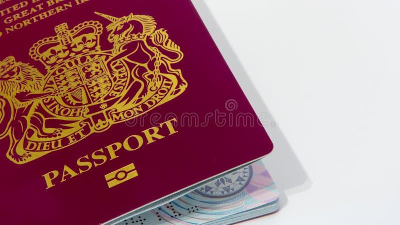 护照 免版税库存图片