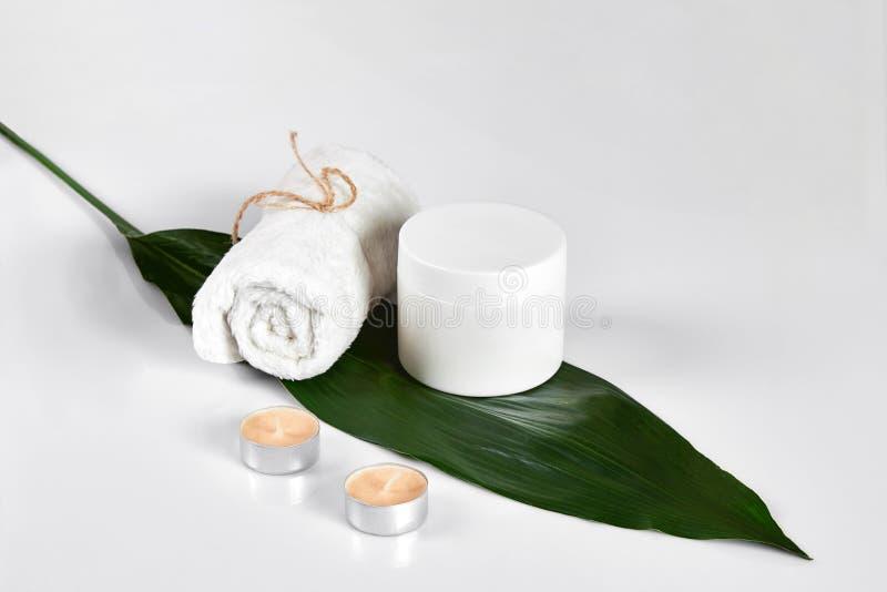 护肤与瓶子的秀丽治疗身体润肤霜 与大绿色叶子的白色身体化妆水在轻的背景 免版税库存图片