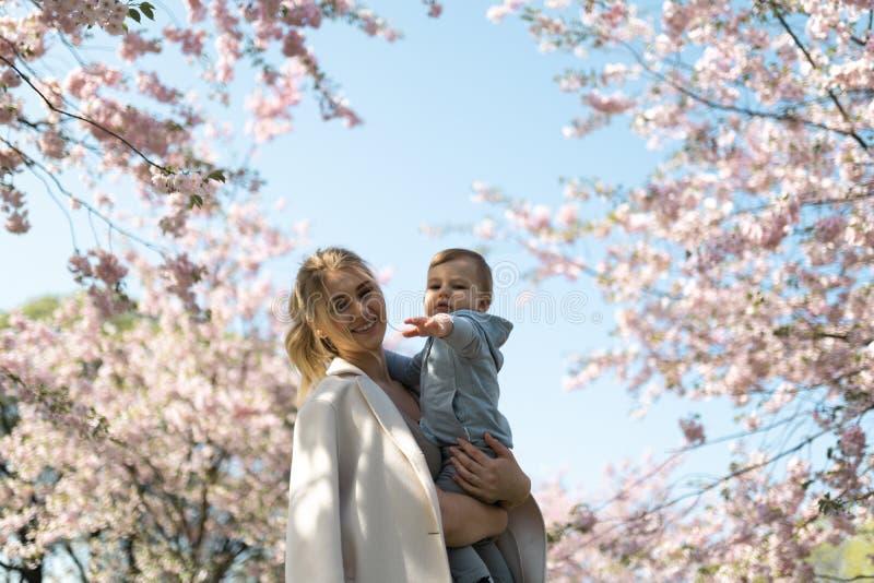 抱她的小小儿子男孩孩子的年轻母亲妈妈在与落的桃红色瓣的开花的佐仓樱桃树下和 免版税图库摄影