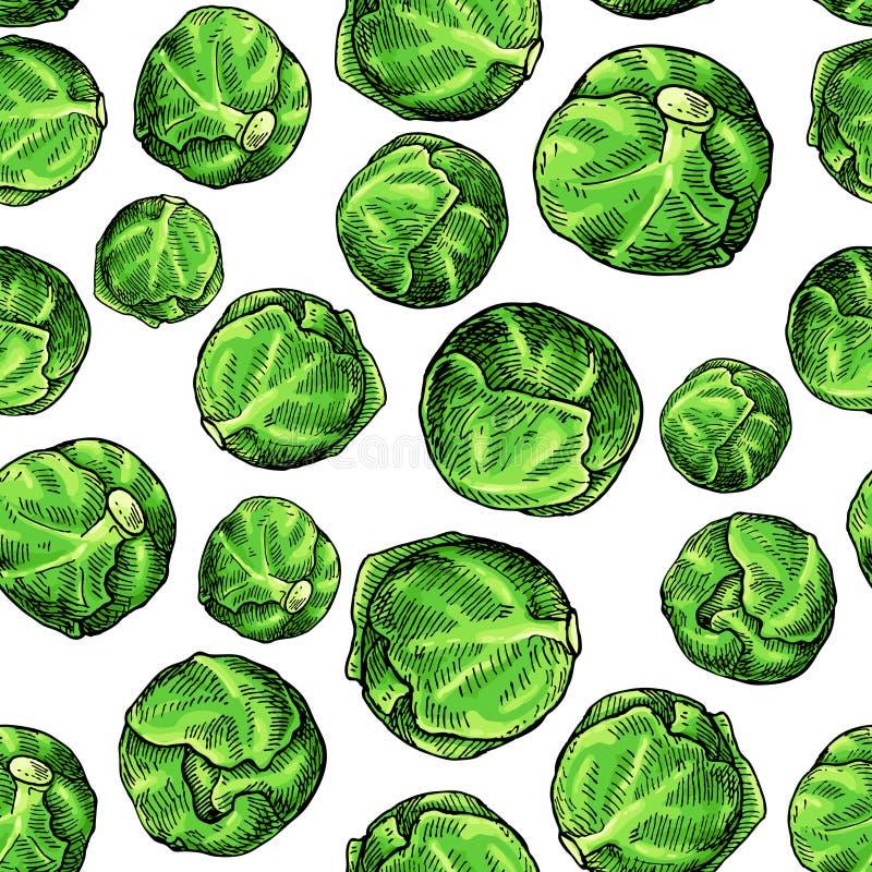 抱子甘蓝手拉的传染媒介无缝的样式 菜艺术风格对象 向量例证