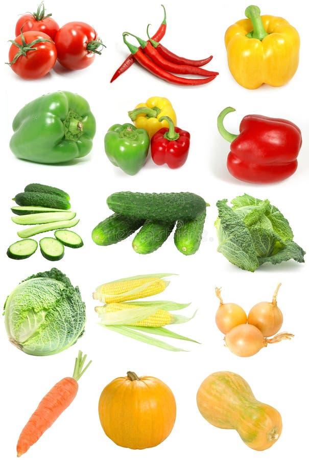 抽样人员蔬菜 图库摄影