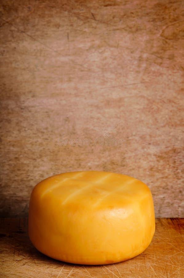 抽烟的干酪 库存图片