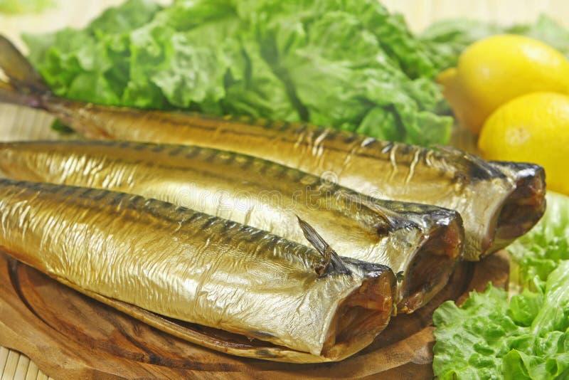 抽烟的鲭鱼 免版税库存照片