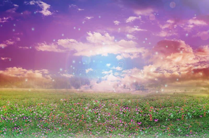 天堂色院_抽象五颜六色梦想象与花田的天堂天空