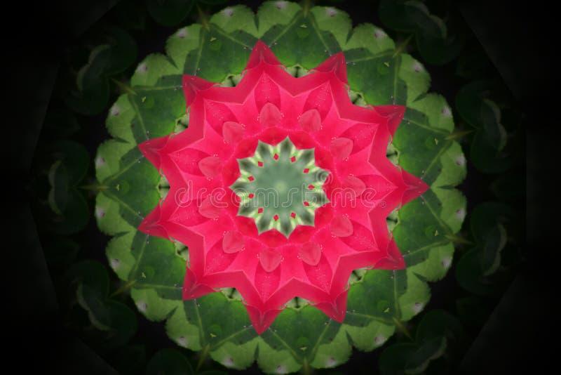 抽象五颜六色的现代圈子坛场和万花筒样式 库存例证