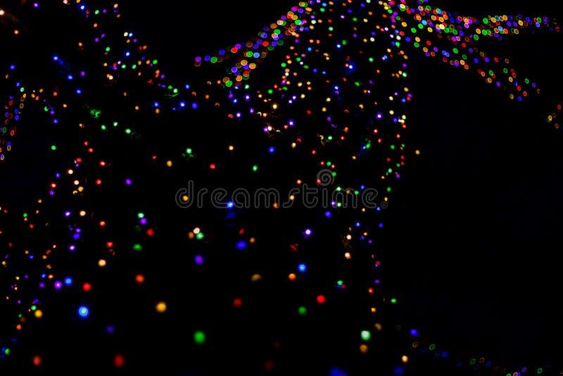 抽象五颜六色的bokeh光在欢乐假日圣诞节背景的晚上 免版税库存照片
