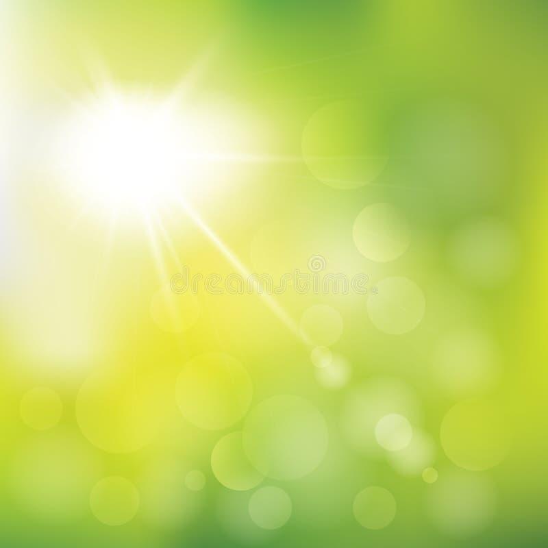 抽象传染媒介夏天阳光例证 与defocused光的晴朗的绿色背景天空 特别太阳透镜火光 向量例证